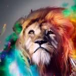 Viața Spirituală Profile Picture